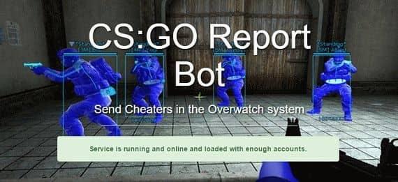 Report Bot