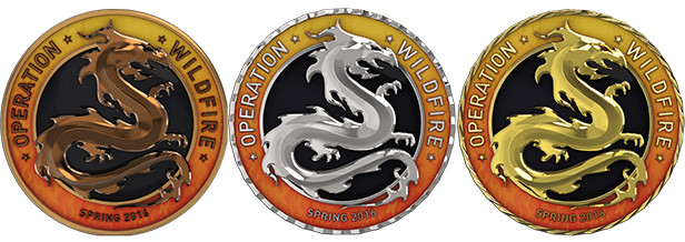 Серебряная Медаль за спецоперации CS GO